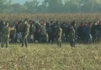 پلیس اسلوونی هزاران پناهجو را به مرزهای اتریش هدایت کرد