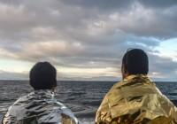رد پیشنهاد عفو عمومی برای پناهجویان تنها