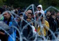 موج جدید پناهجویان افغان به قصد مهاجرت به اروپا
