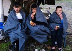 پذیرش پناهجویان در اروپا؛ چه کشورهایی با شیوع کرونا معاهدات را نقض کردند؟