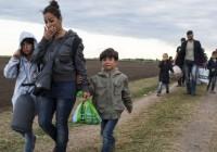 چرا کشورهای عربی حاشیه خلیج فارس به جنگزدگان سوری پناه نمیدهند