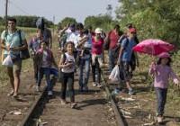 شتاب در حرکت مهاجران بسوی کرواسی با وجود باران و سرما