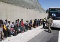 دستگیری ۲۹۴ مهاجر غیرقانونی در آغریترکیه