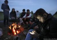 اداره مهاجرت آلمان خواهان حق دسترسی به داده های تلفن همراه پناهجویاناست