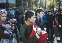 «خواست پناهجو در تعیین محل زندگیاش باید رعایت شود»
