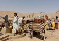 سازمان ملل: خشکسالی بیش از تنش و درگیری در افغانستان موجب مهاجرت میشود