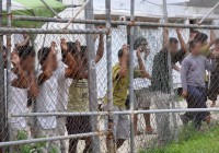 سازمان الملل باید پناهجویان از جزایر اقیانوس آرام به استرالیا بازگردانده شوند